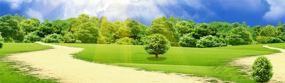 Экологические системы — элементарные и макросистемы