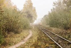 Полотно узкоколейки, разрушенное в результате наводнения 1969 г. в Украинских Карпатах.
